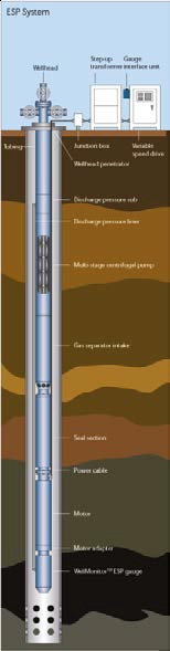 OMS - Downhole Monitoring System